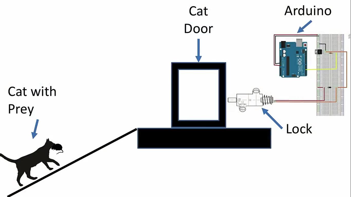 Инженер Amazon создал блокирующее устройство с ИИ, которое не пускает в дом кота с уличной добычей - 8