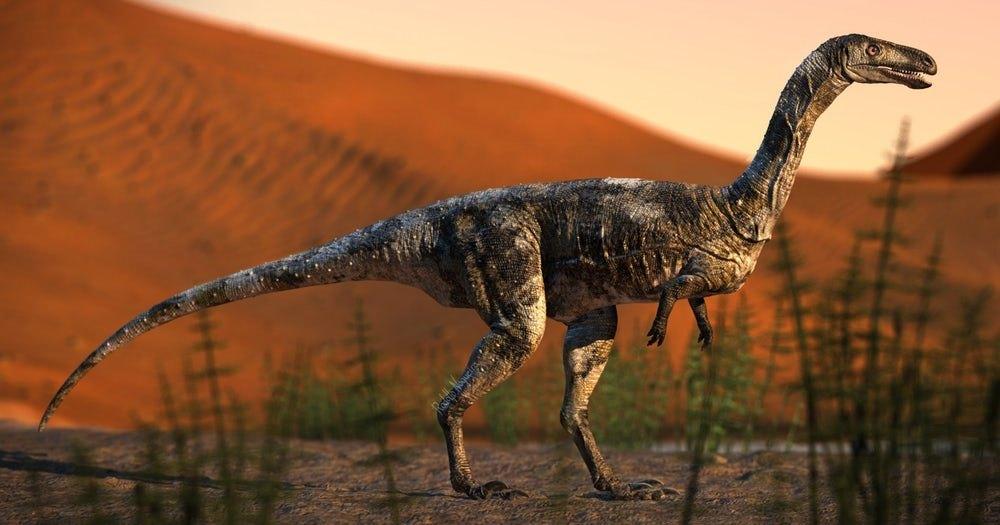 Описан ранее неизвестный небольшой хищный динозавр