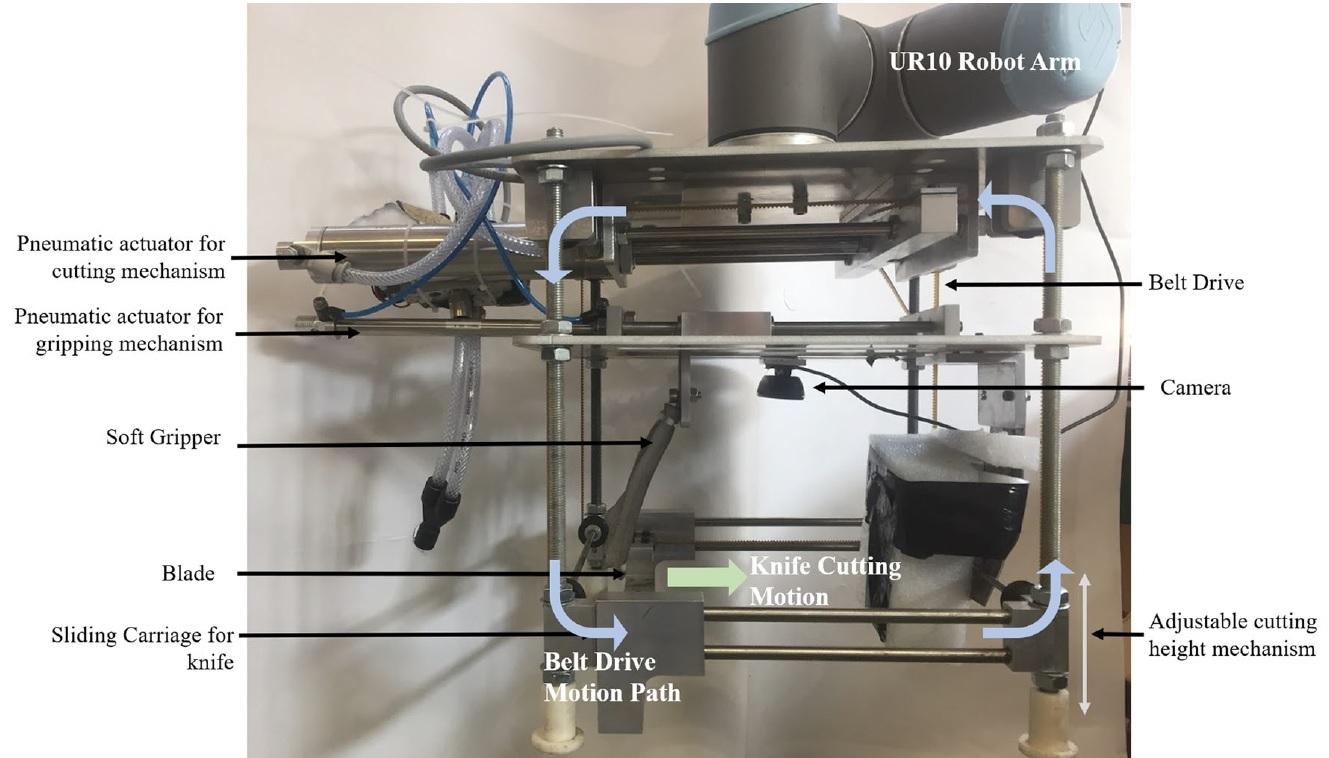 Агро-робот с ИИ научился аккуратно собирать с грядки только созревший салат - 20