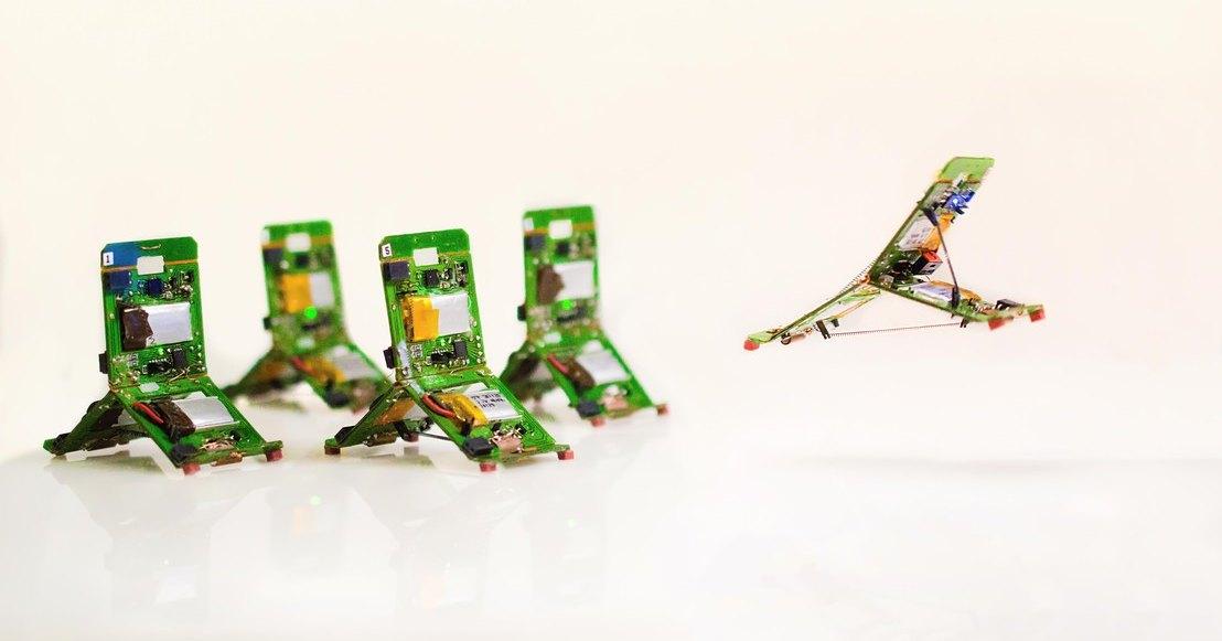 Прыгающие роботы-муравьи работают в команде для преодоления препятствий