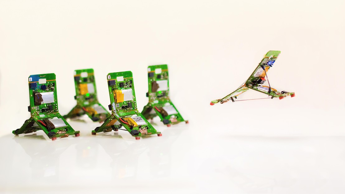 Роботов-муравьев научили прыгать и выполнять командную работу - 1
