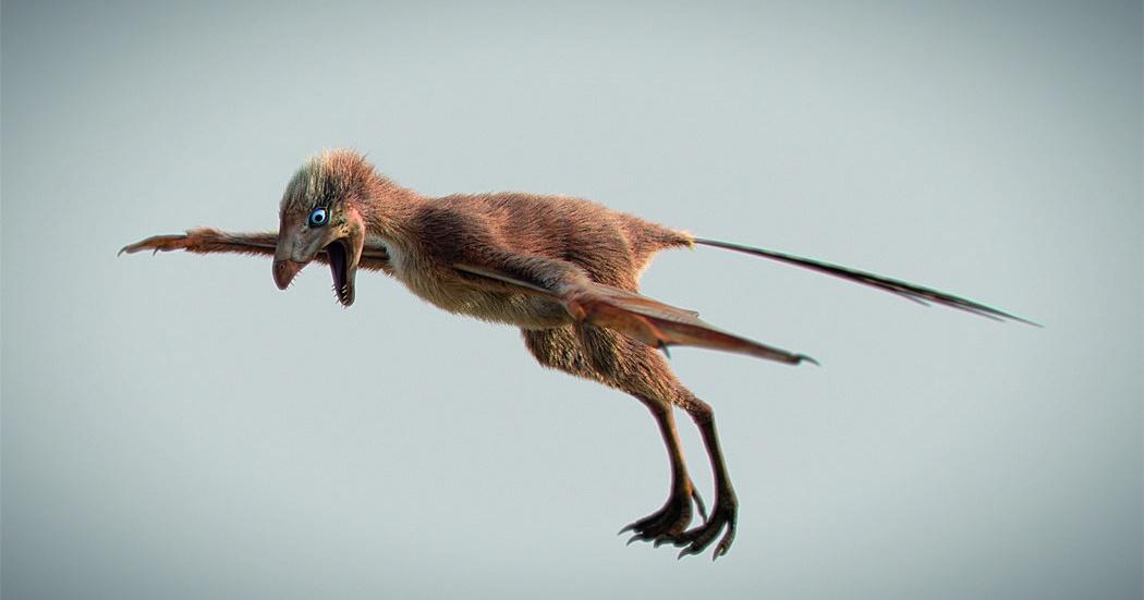 Рукастый ящер: динозавр с самым коротким именем