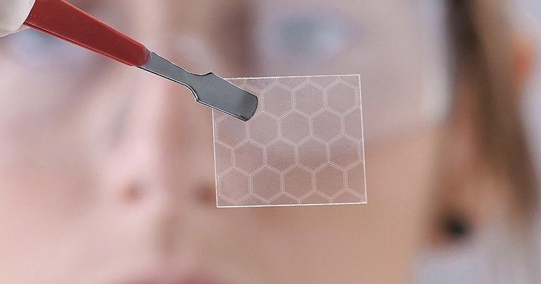 Бактерии производят высококачественный графен: технология будущего