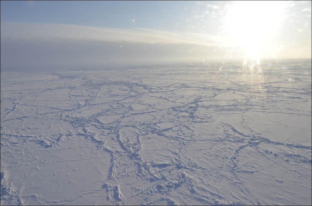 Как дойти до Северного полюса от дрейфующей базы Барнео - 13