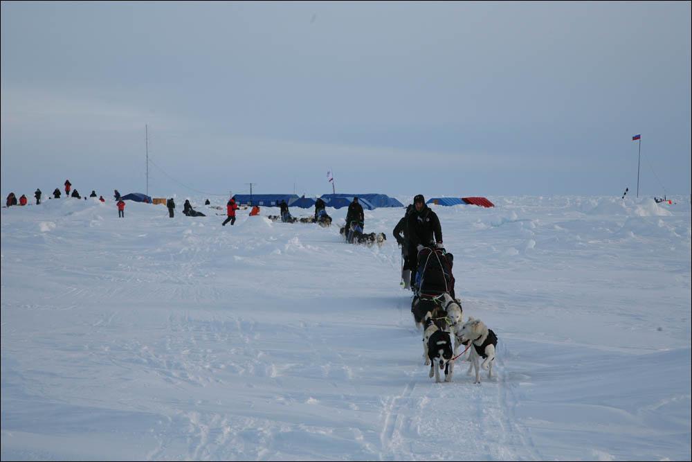 Как дойти до Северного полюса от дрейфующей базы Барнео - 14