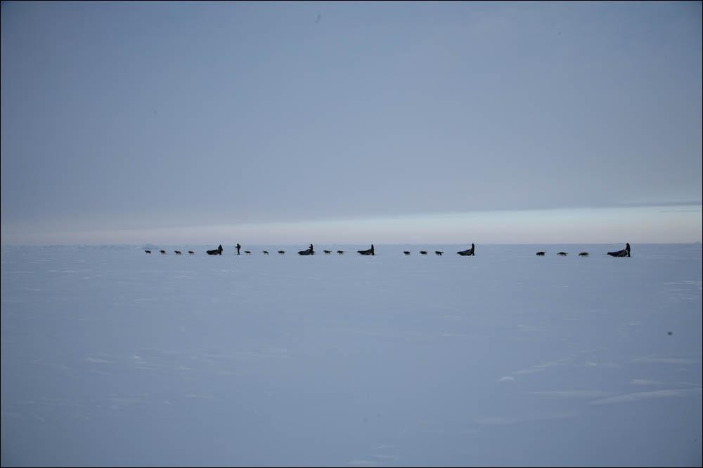 Как дойти до Северного полюса от дрейфующей базы Барнео - 16