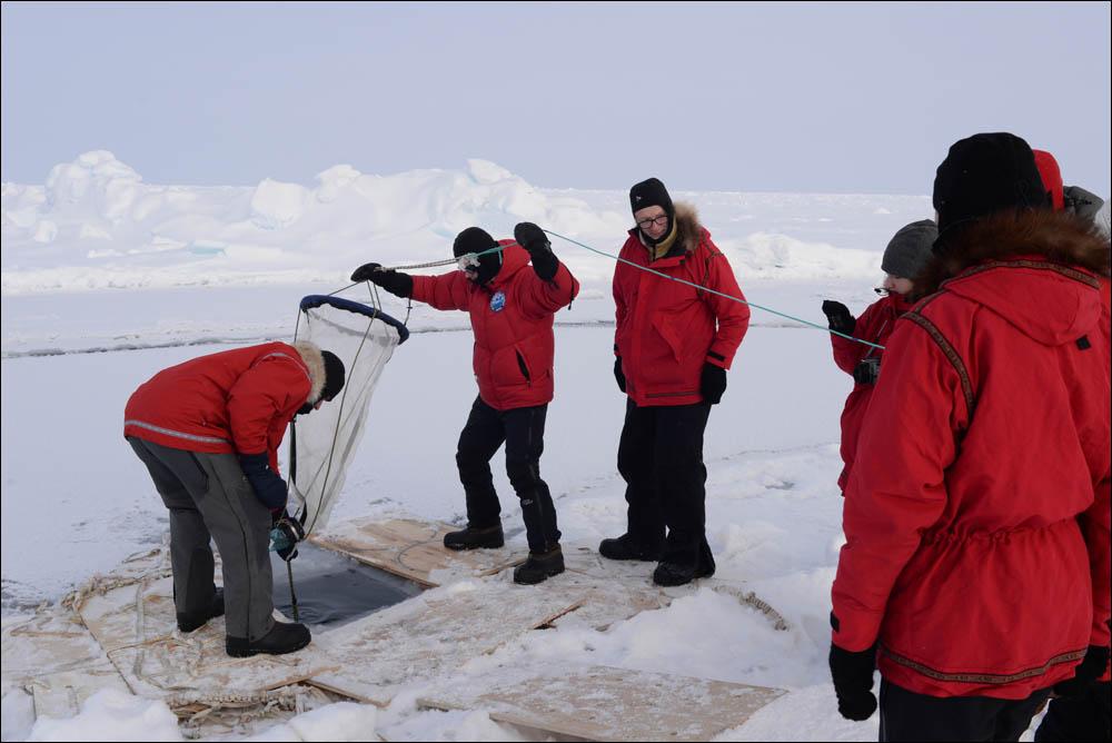 Как дойти до Северного полюса от дрейфующей базы Барнео - 24