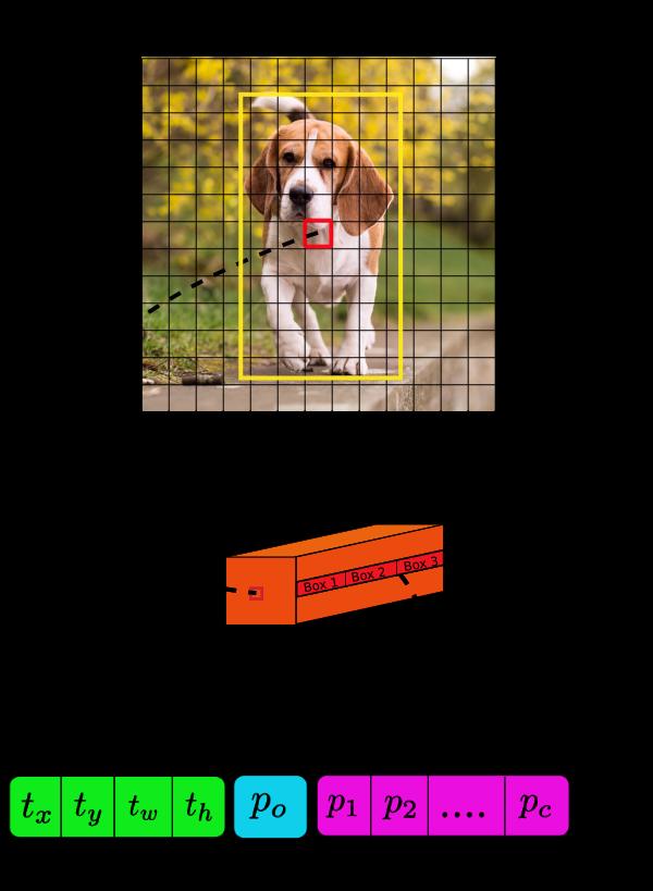 Распознавание объектов в режиме реального времени на iOS с помощью YOLOv3 - 7