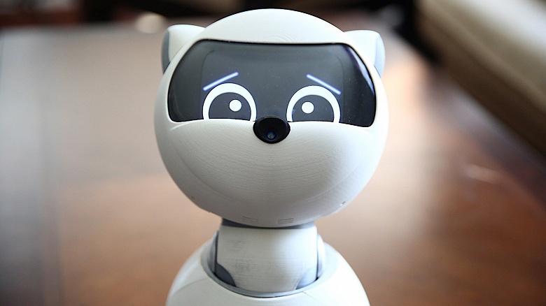 Kiki — настольный робот-компаньон, который стоит 1500 долларов, но не может сдвинуться с места