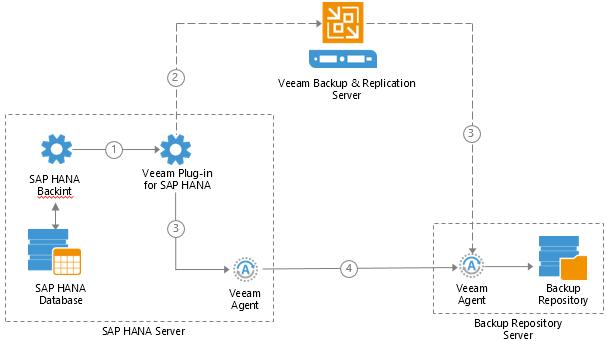 Плагин Veeam для бэкапа и восстановления баз данных SAP HANA - 2