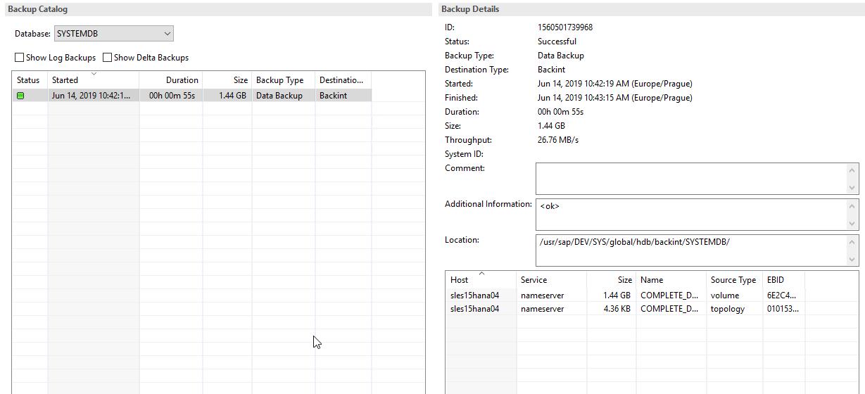 Плагин Veeam для бэкапа и восстановления баз данных SAP HANA - 9