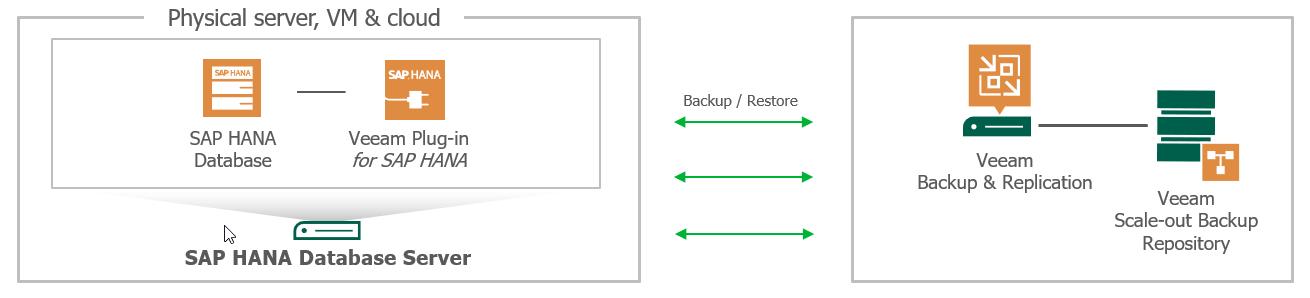 Плагин Veeam для бэкапа и восстановления баз данных SAP HANA - 1