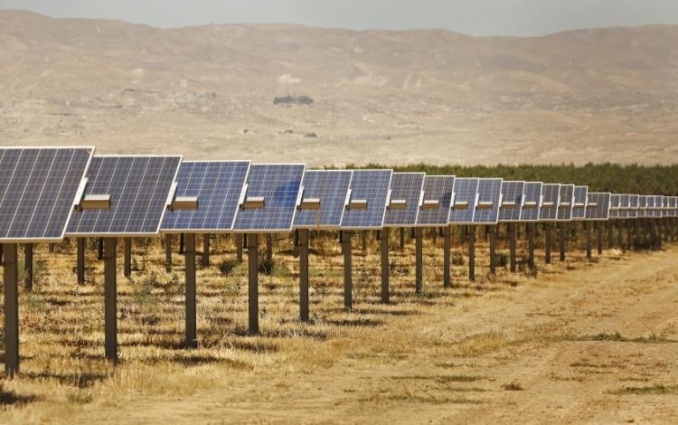 Калифорнийские фермеры устанавливают солнечные батареи из-за сокращения запасов воды и сельхозугодий