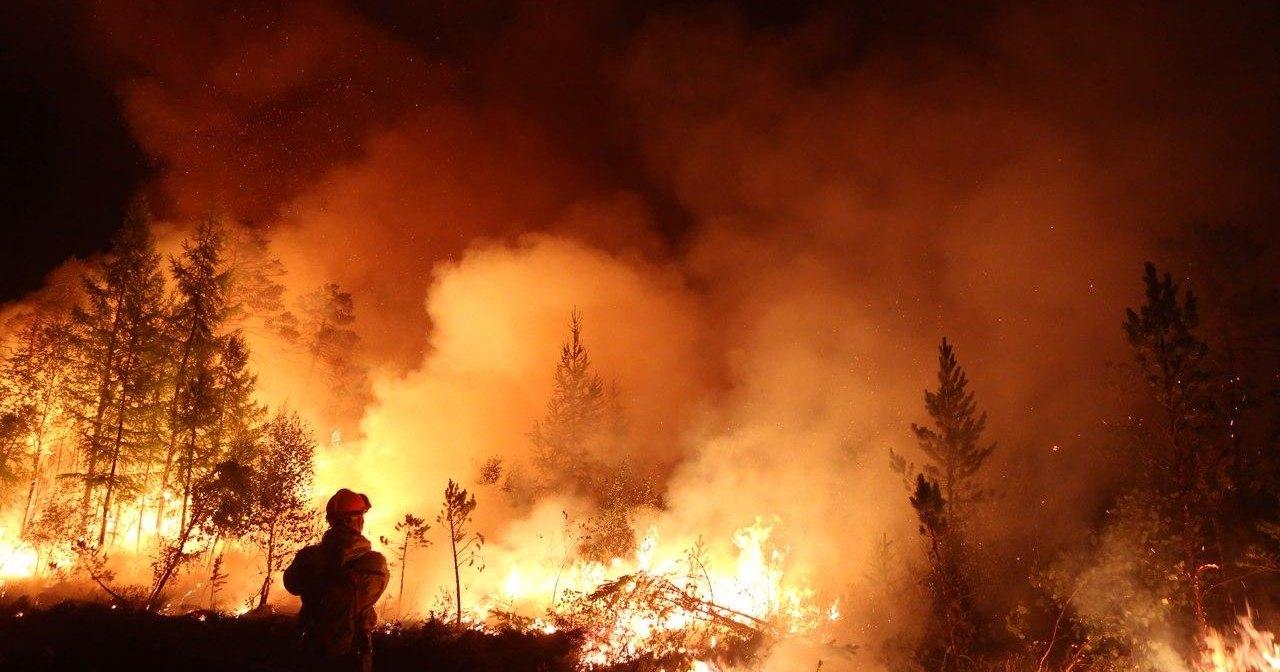 Установлено, кому выгодны лесные пожары