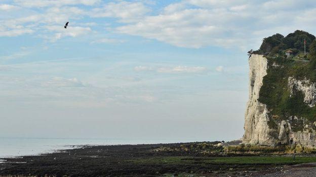 Французский изобретатель пересек Ла-Манш на самодельном флайборде - 7