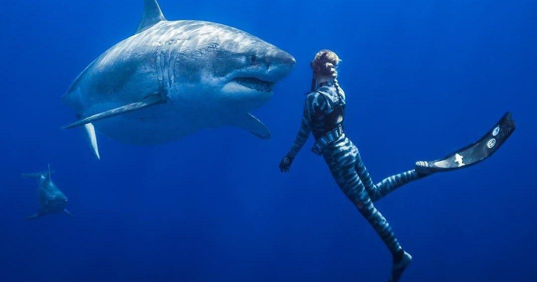 Красивая девушка и акула-людоед: вместе в океане