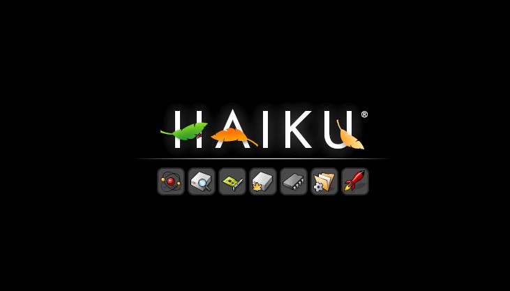 Мой четвертый день с Haiku: проблемы с установкой и загрузкой - 1