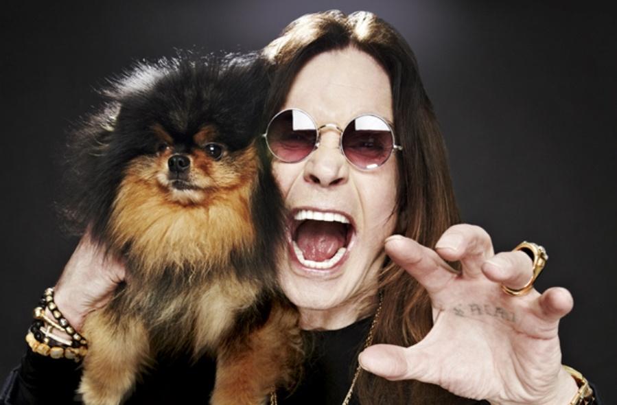 Хеви-метал оболгали: на самом деле тяжелая музыка положительно влияет на здоровье своих поклонников - 1