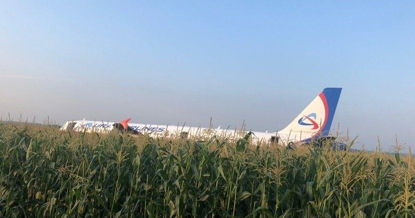 Airbus A321 совершил жёсткую посадку в кукурузном поле Подмосковья