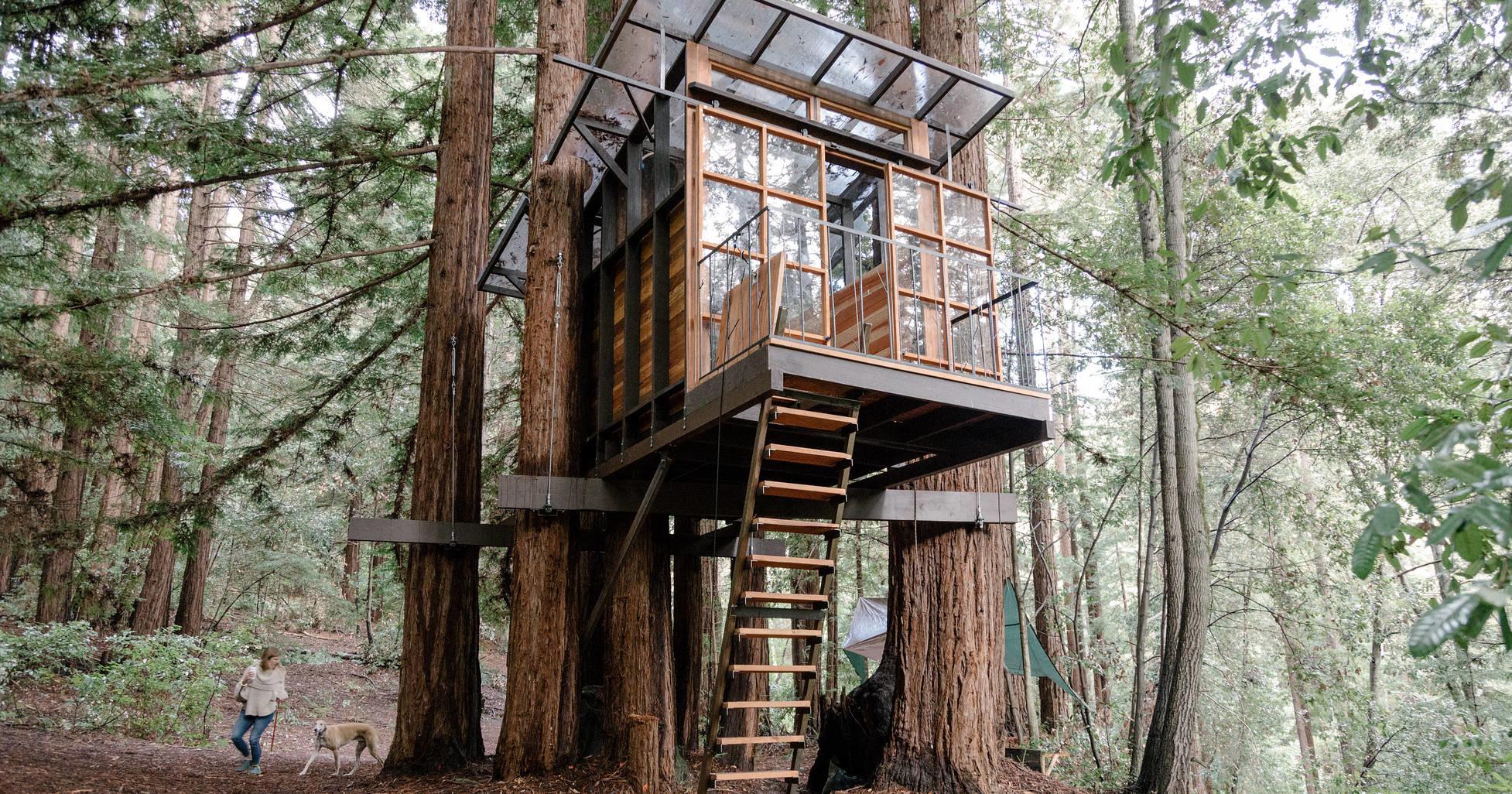 Как построить домик на дереве: часть 1