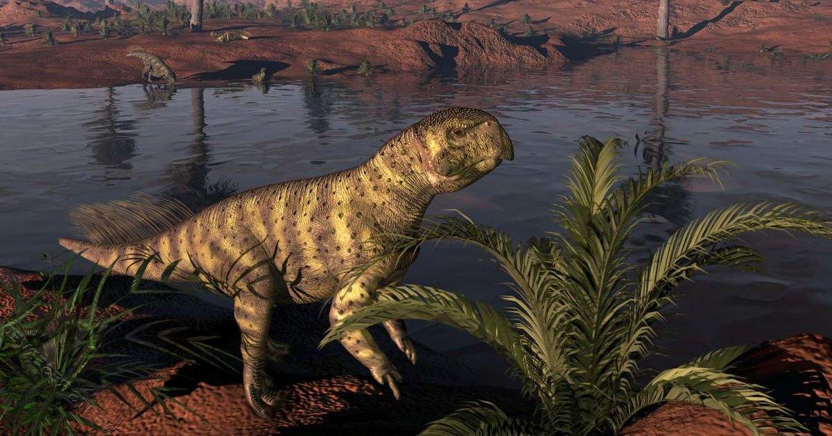 Четвероногие динозавры могли с возрастом переходить к двуногости