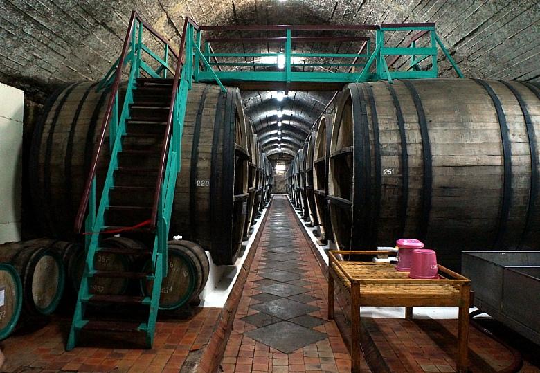 Когда история ненастоящая: винзавод «Коктебель», фейковые вина и уроки маркетинга - 8
