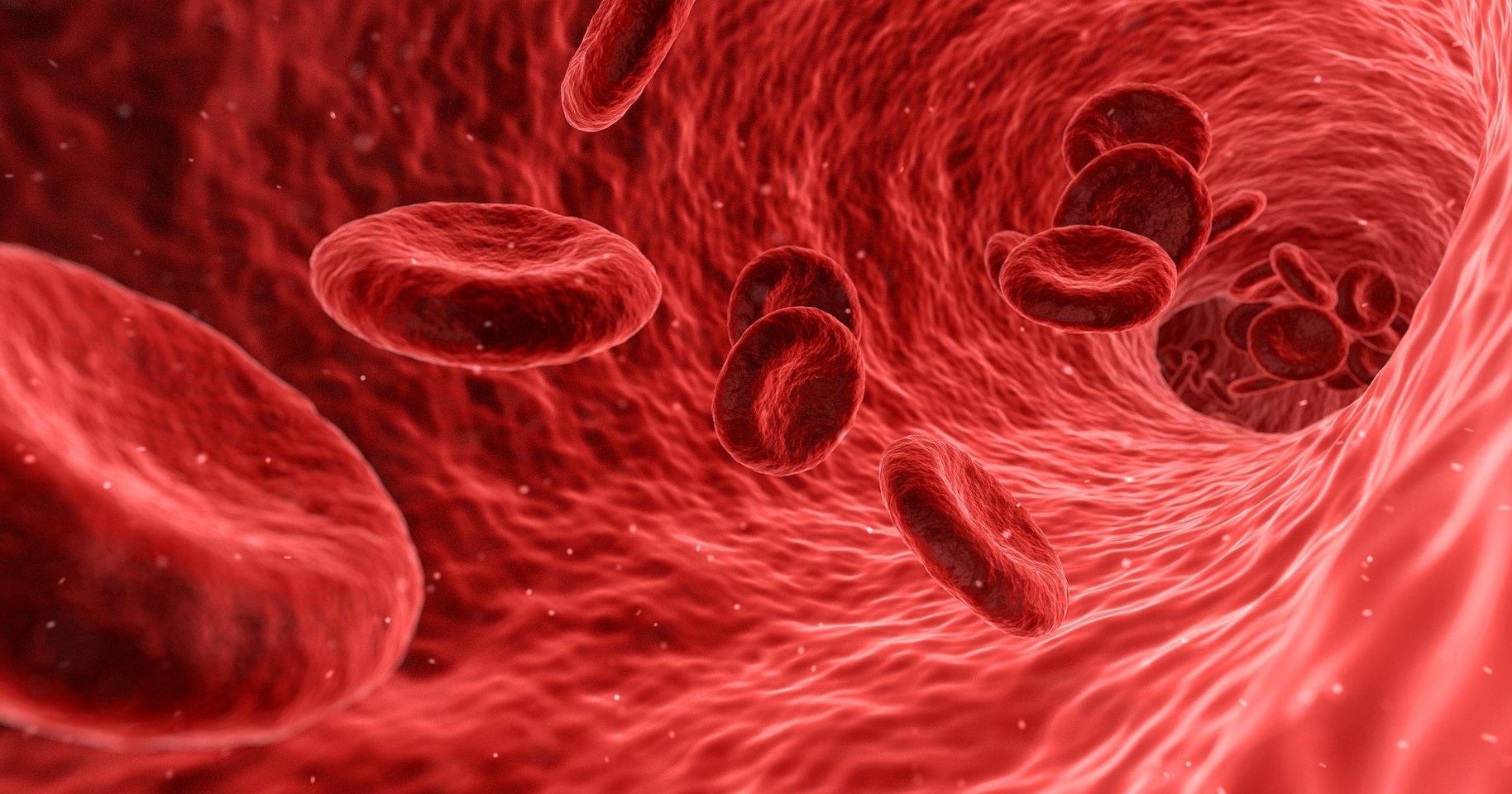 Группа крови: какие болезни грозят каждому «типу»
