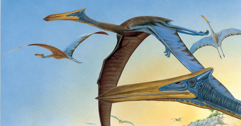 В какашках птерозавров нашлись фораминиферы