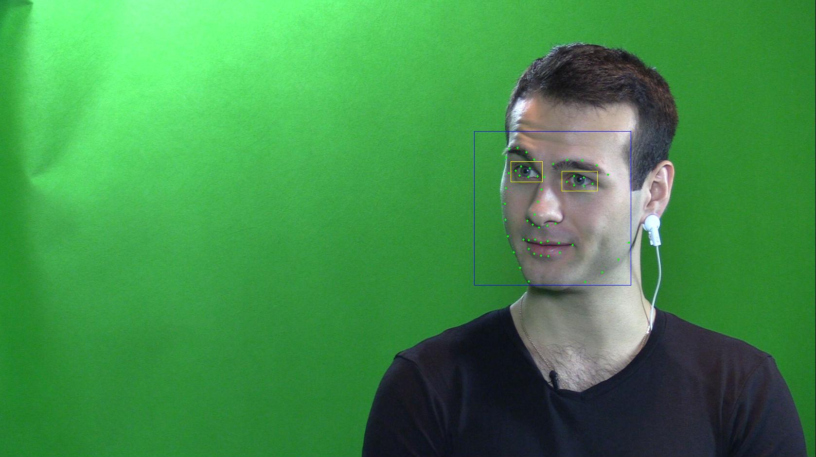 Компьютерное зрение видит эмоции, пульс, дыхание и ложь — но как построить на этом стартап. Разговор с Neurodata Lab - 3