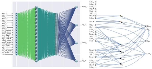 Нечувствительные к весам нейронные сети (WANN) - 1