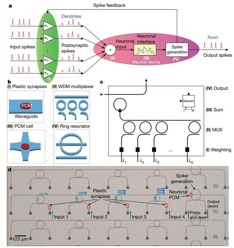Учёные всё ближе к созданию полностью оптических нейронных сетей