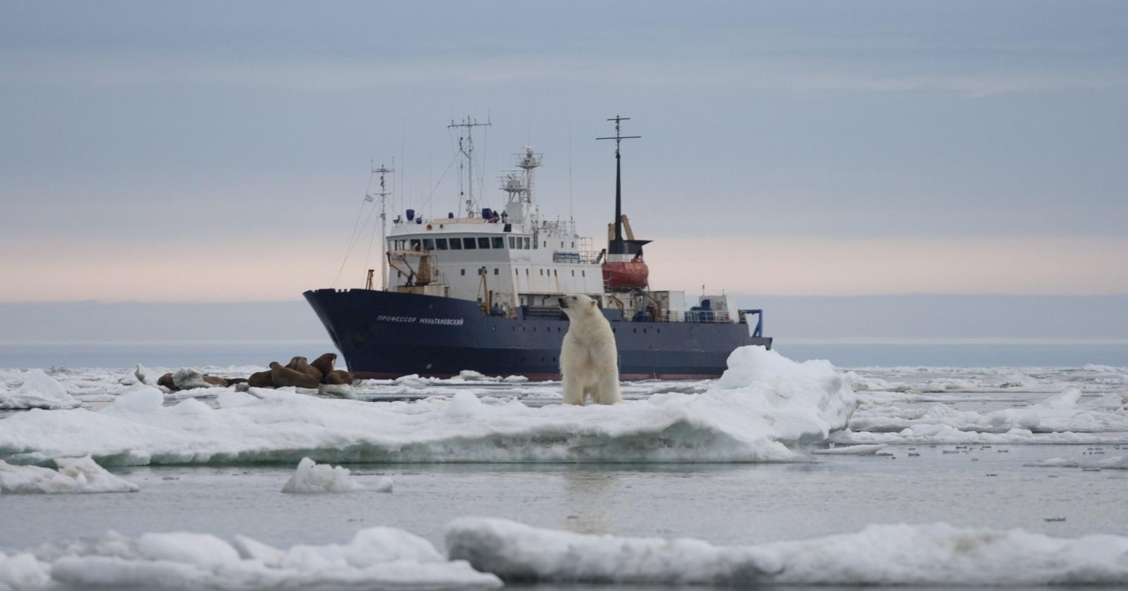 В Карском море найден термоклин