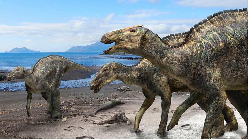 Обнаружен ранее неизвестный гадрозавр