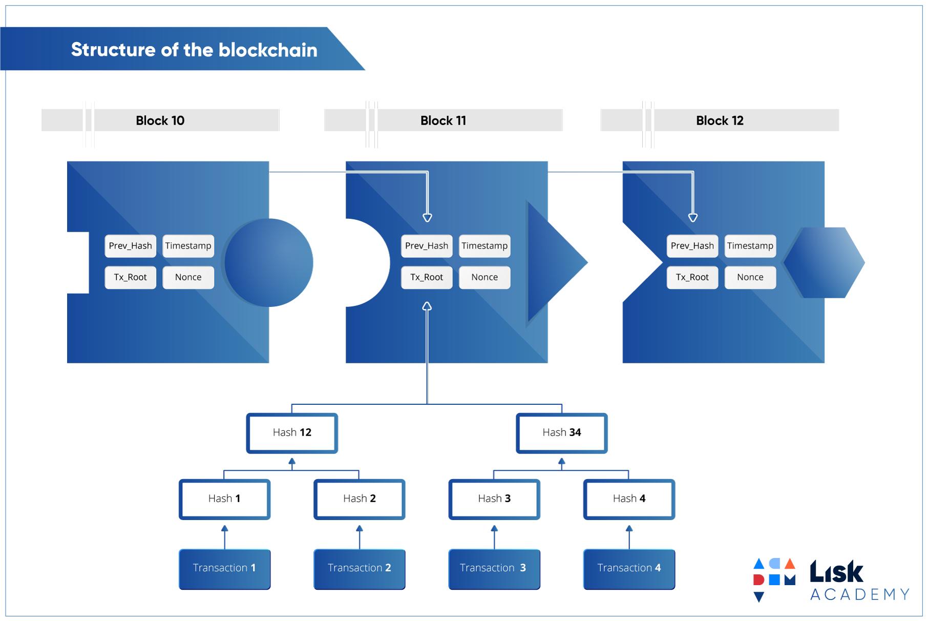 Как работает децентрализованный мессенджер на блокчейне - 5