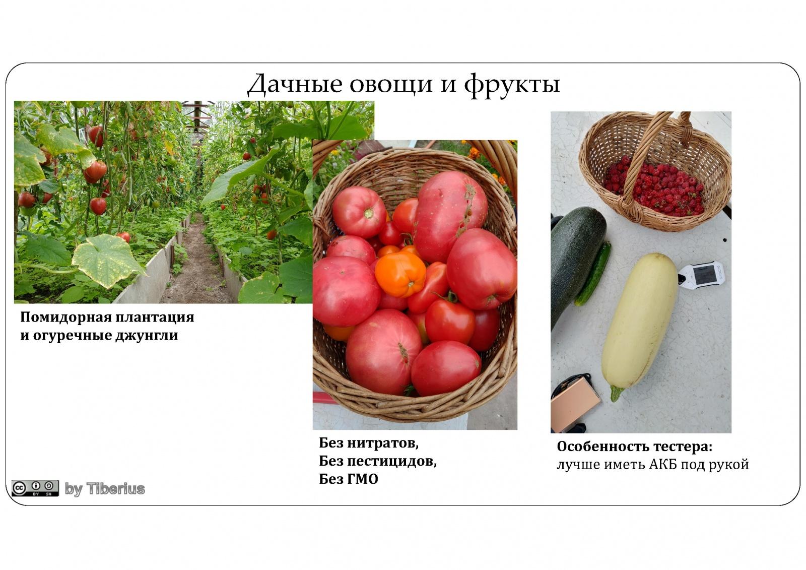 Нитраты в продуктах: магазины Швейцарии vs магазины России vs дача - 10