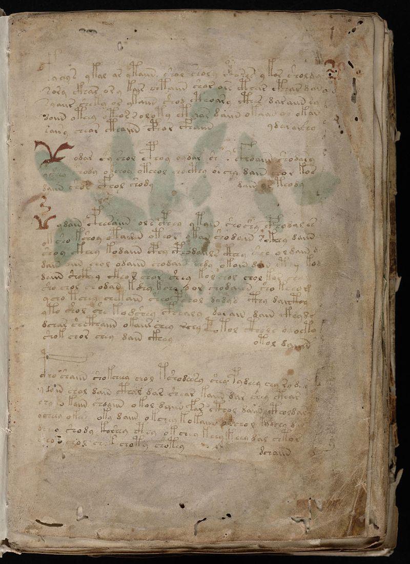«Манускрипт Войнича»: таинственная книга на неизвестном языке