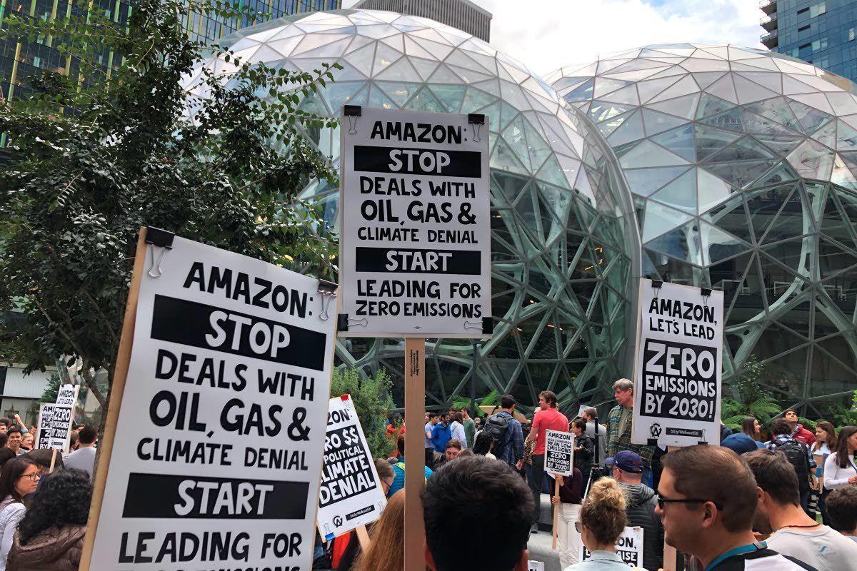 Amazon объявила о плане борьбы с глобальным потеплением - 3