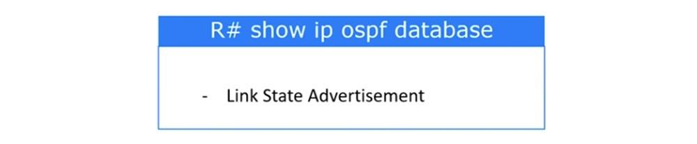 Тренинг Cisco 200-125 CCNA v3.0. День 46. Проверка работы OSPF - 14