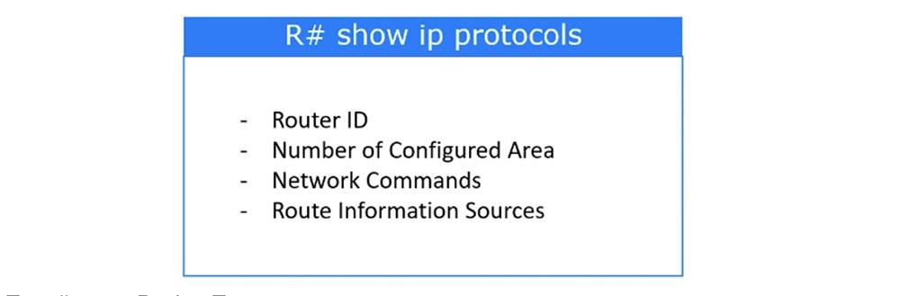 Тренинг Cisco 200-125 CCNA v3.0. День 46. Проверка работы OSPF - 3