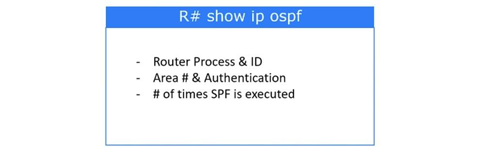 Тренинг Cisco 200-125 CCNA v3.0. День 46. Проверка работы OSPF - 7