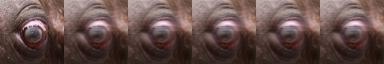 Как я создал фильтр, не портящий изображение даже после миллиона прогонов - 42