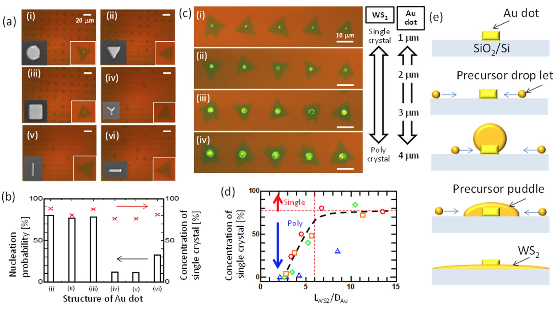 Дихалькогениды переходных металлов: раскрытие секретов динамики роста кристаллов WS2 - 4