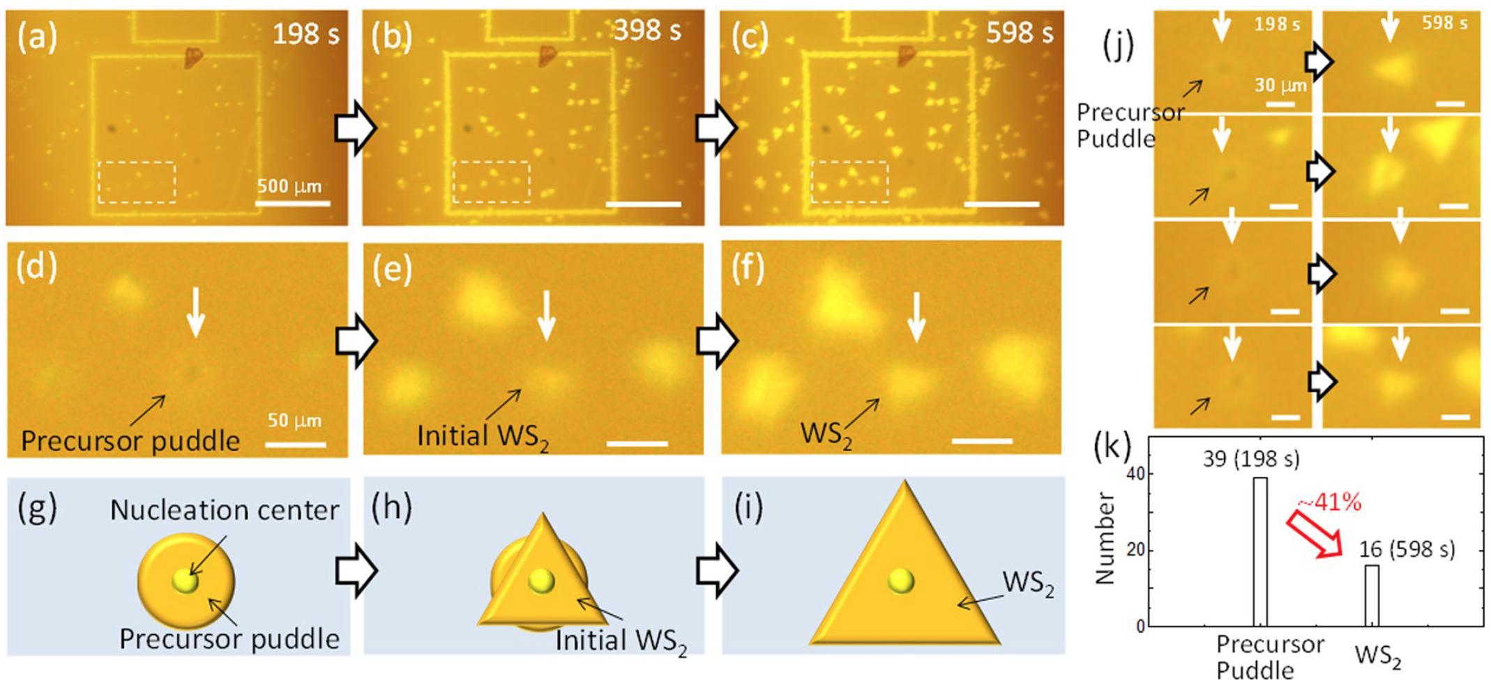 Дихалькогениды переходных металлов: раскрытие секретов динамики роста кристаллов WS2 - 5