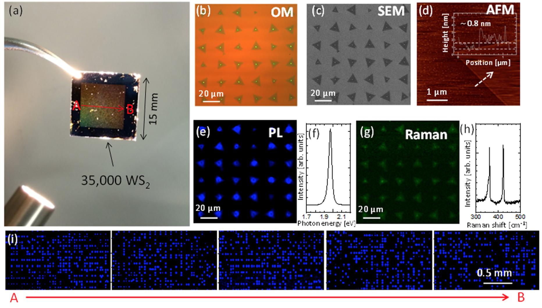Дихалькогениды переходных металлов: раскрытие секретов динамики роста кристаллов WS2 - 6