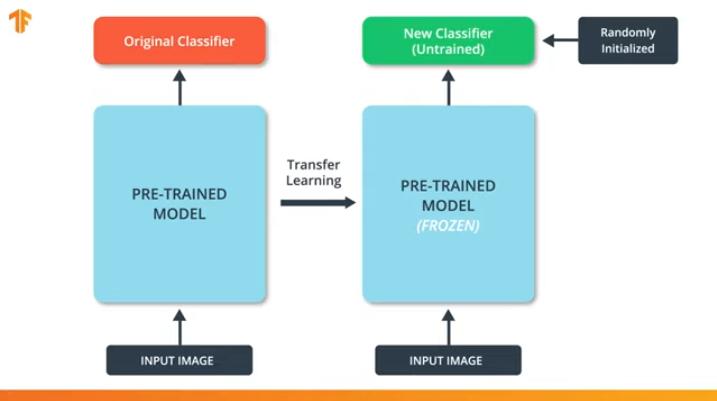 Погружение в свёрточные нейронные сети: передача обучения (transfer learning) - 8