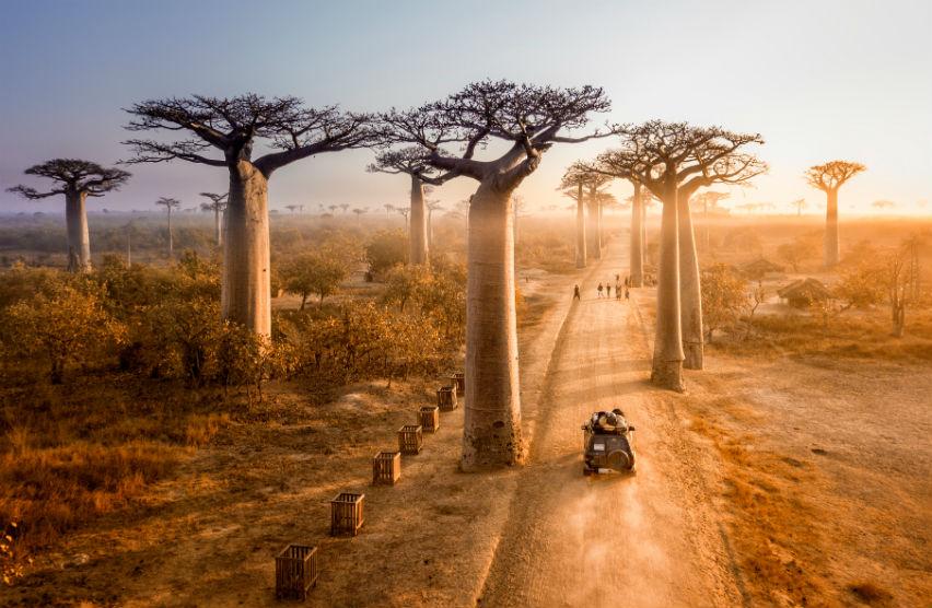Мадагаскар — остров контрастов - 1