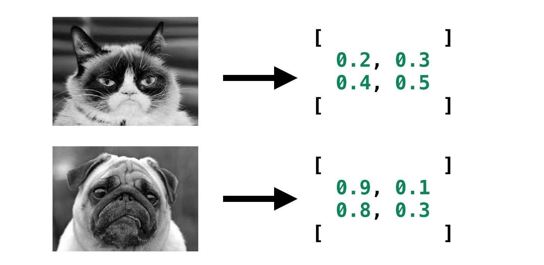 Самый мягкий и пушистый путь в Machine Learning и Deep Neural Networks - 9
