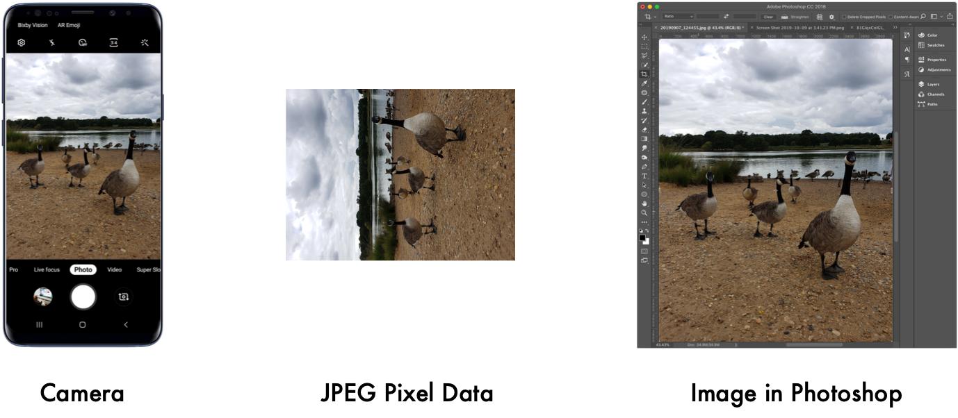 Глупая причина, по которой не работает ваше хитрое приложение машинного зрения: ориентация в EXIF - 3