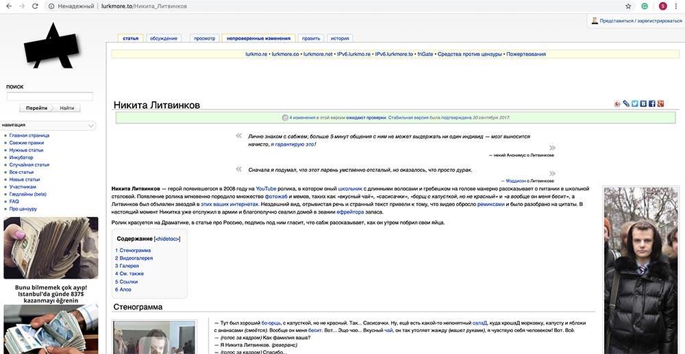Холивар. История рунета. Часть 6. Блокировки: Лурк, Лента, 282-я и китайский путь - 44
