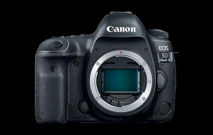 Новые короли фотографии на подходе. Canon готовит к выпуску EOS 5D Mark V и EOS R Mark II